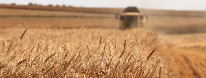 Landwirtschaft 4.0
